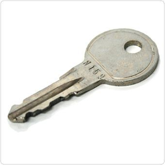 Ersatzschlüssel THULE N101 Schlüssel Dachbox Dachkoffer Fahrradträger